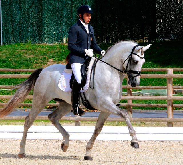 spanish-horses_011
